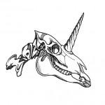 Nic Finch - Unicorn Skull | www.chameleonic.tumblr.com