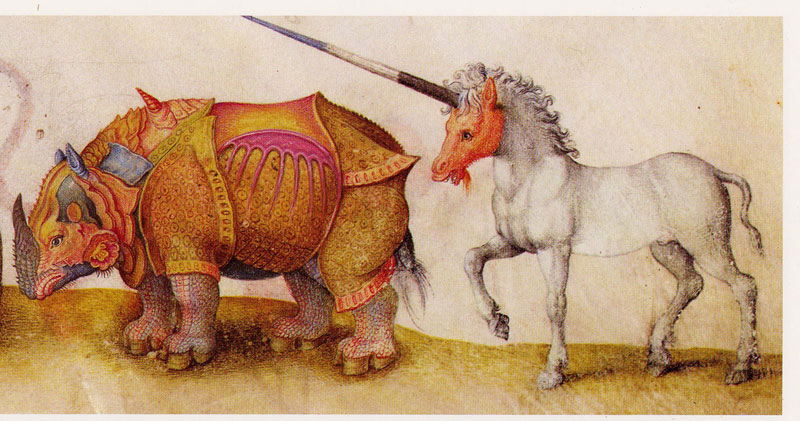 Rhino and a Unicorn Medieval Manuscript